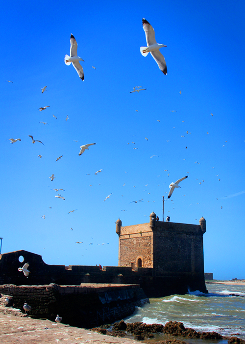 day-trip-to-essaouira-from-marrakech