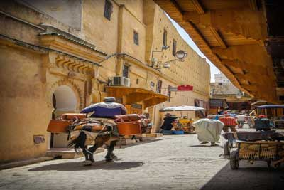 7 days tour from Fes