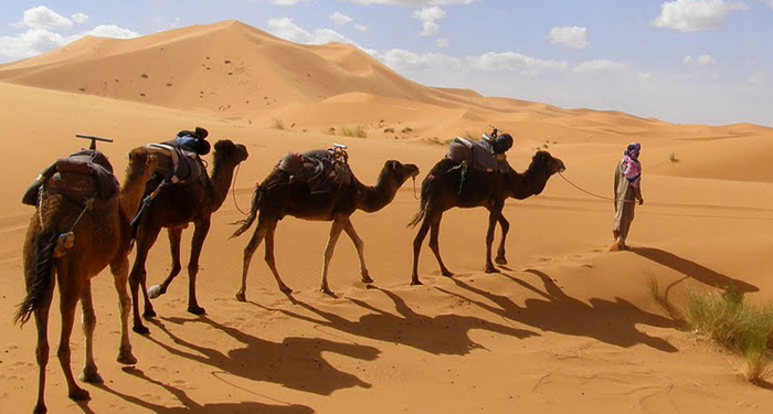 2 days in sahara desert from marrakech
